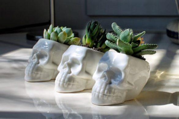 skull decorations